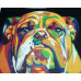 Kit pictura pe numere cu animale, DTP323