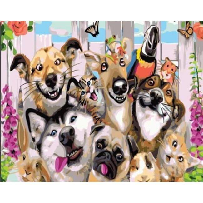 Kit pictura pe numere cu animale, DTP1781