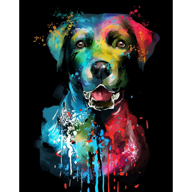Kit pictura pe numere cu animale, DTP2066