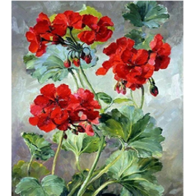 Kit pictura pe numere cu flori, DTP2991