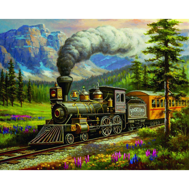 Kit pictura pe numere cu diverse, DTP3571