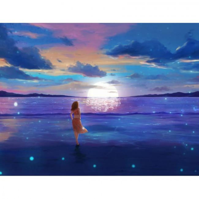 Kit pictura pe numere cu apa, DTP3929
