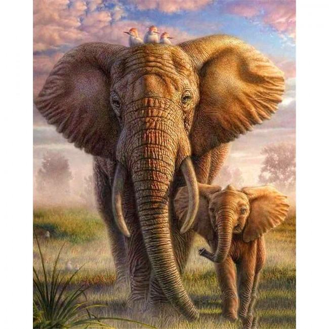 Kit pictura pe numere cu animale, DTP4533