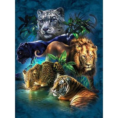 Kit pictura pe numere cu animale, DTP4696