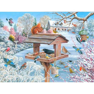 Kit pictura pe numere cu iarna, DTP4964
