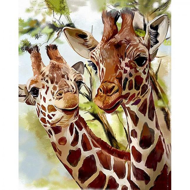Kit pictura pe numere cu animale, DTP4973