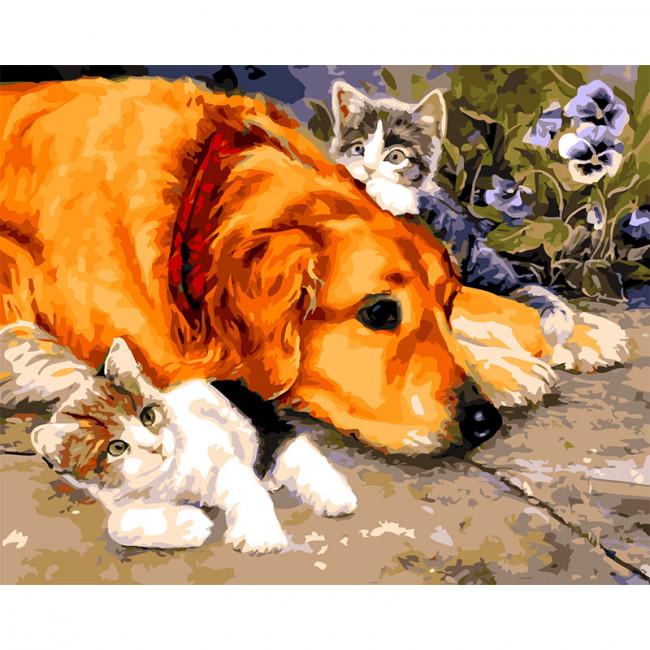Kit pictura pe numere cu animale, DTP674