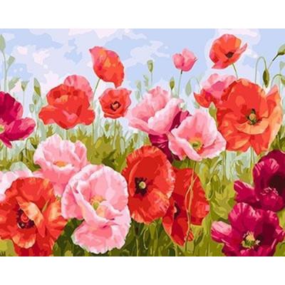 Kit pictura pe numere flori, DTP2798
