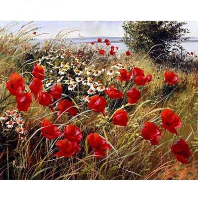 Kit pictura pe numere flori, DTP2799