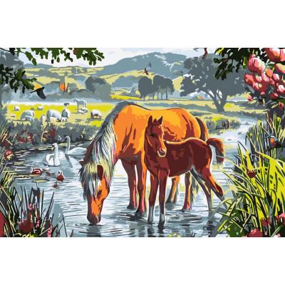 Kit pictura pe numere premium cu animale, NDTP-033