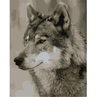 Kit pictura pe numere cu animale, NDTP-240