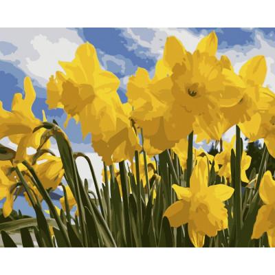Kit pictura pe numere cu flori, NDTP-3206