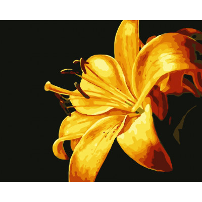 Kit pictura pe numere cu flori, NDTP-338