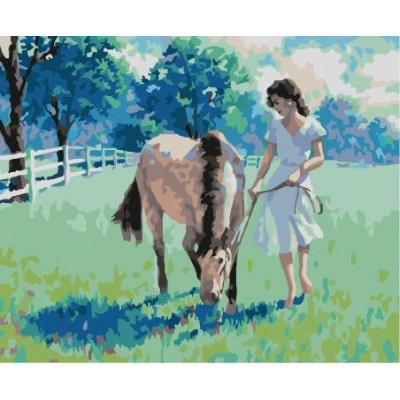 Kit pictura pe numere cu animale, NDTP-585