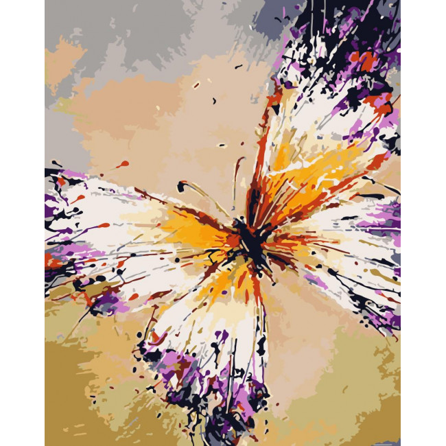 Kit pictura pe numere cu fluturi, NDTP-684