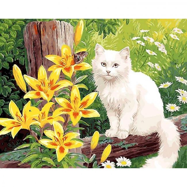 Kit pictura pe numere cu animale, DTP1138