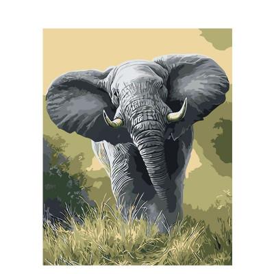Kit pictura pe numere cu animale, DTP2703