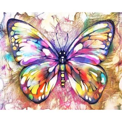Kit pictura pe numere cu fluturi, DTP1854