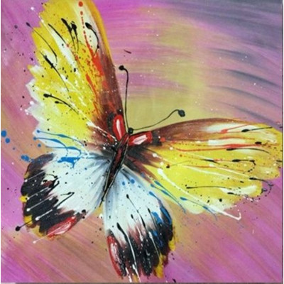Kit pictura pe numere cu fluturi, DTP2250