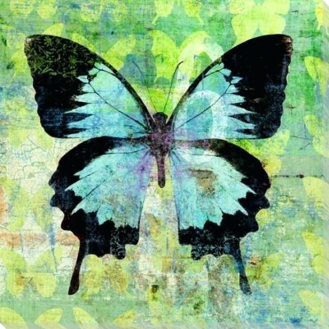 Kit pictura pe numere cu fluturi, DTP2437