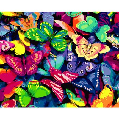 Kit pictura pe numere cu diverse, Rainbow