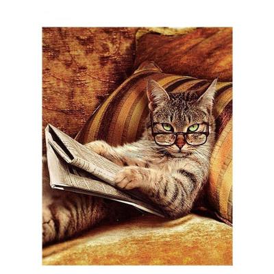 Kit pictura pe numere cu animale, Nerd Cat
