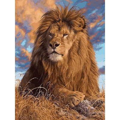 Kit pictura pe numere cu animale, Majestic Lion