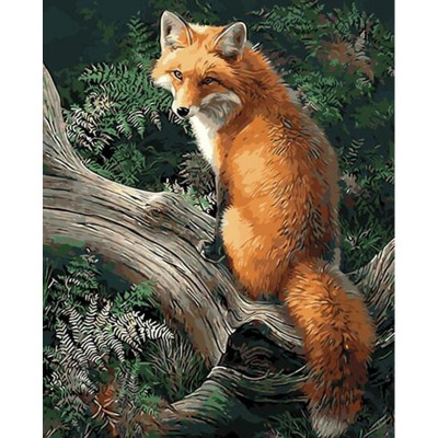 Kit pictura pe numere cu animale, Foxy