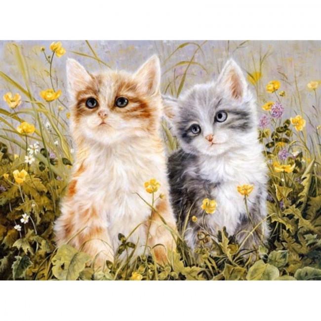 Kit pictura pe numere cu animale, Kitten Ladies