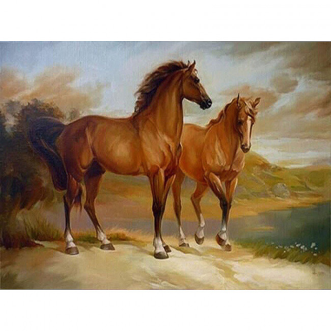 Kit pictura pe numere cu animale, Couple of Horses