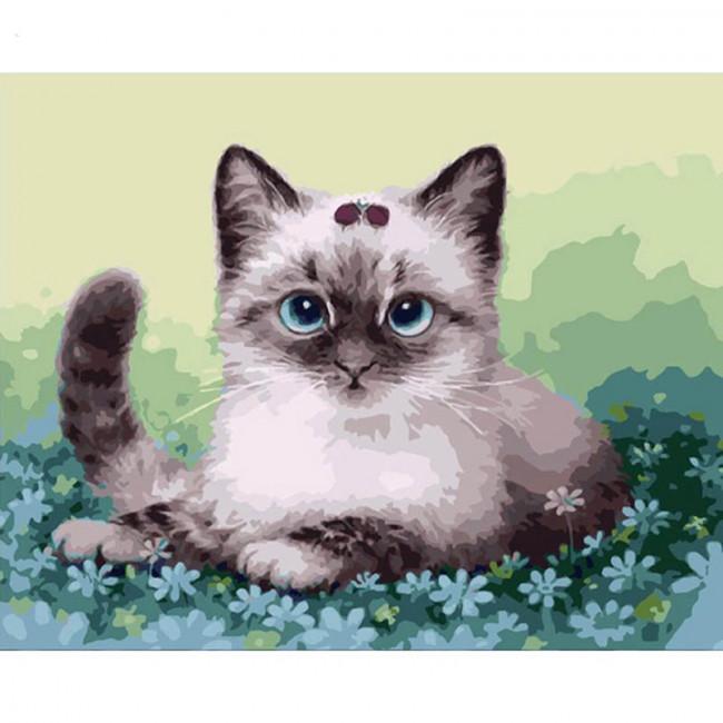 Kit pictura pe numere cu animale, Lil'Cutie