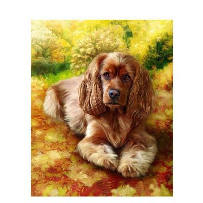 Kit pictura pe numere cu animale, Cutie Pie