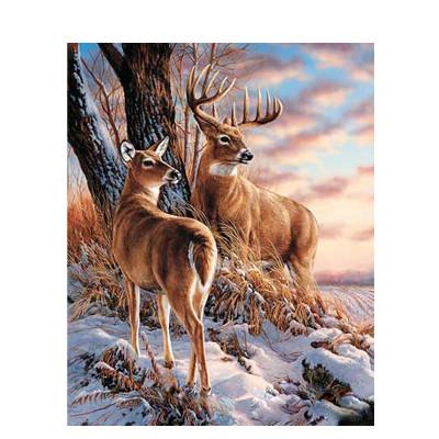 Kit pictura pe numere cu animale, Sublime Animals