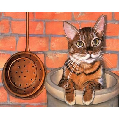 Kit pictura pe numere cu animale, Curious Cat