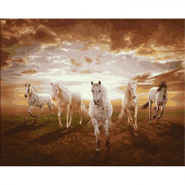 Kit pictura pe numere cu animale, Wild Horses Running