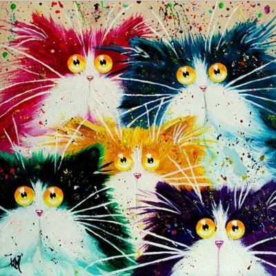Kit pictura pe numere cu animale, Surprised Cats