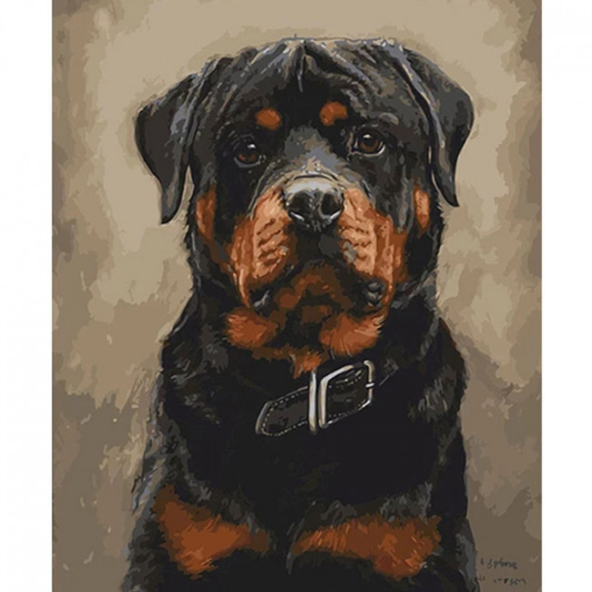 Kit pictura pe numere cu animale, DTP1418