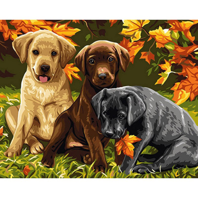 Kit pictura pe numere cu animale, DTP2564