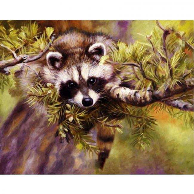 Kit pictura pe numere cu animale, Raccoon Ambush