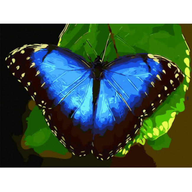 Kit pictura pe numere cu animale, Blue Butterfly