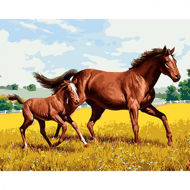 Kit pictura pe numere cu animale, Horse & Foal