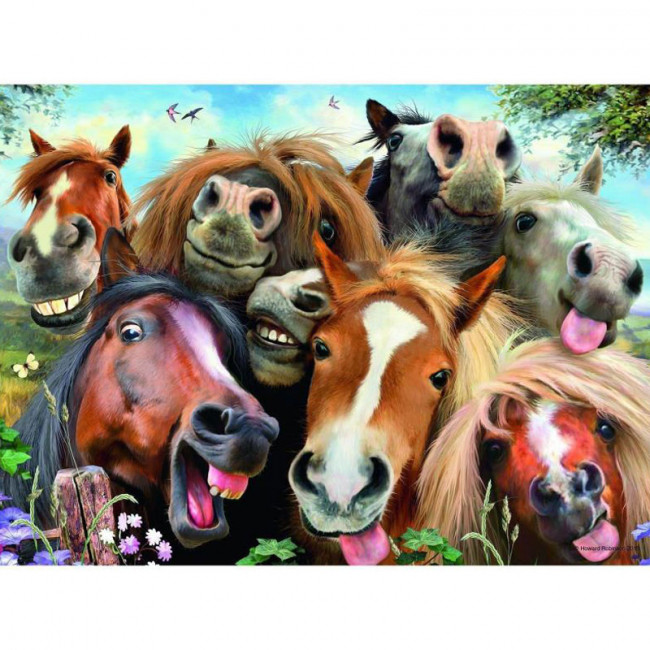 Kit pictura pe numere cu animale, DTP1710