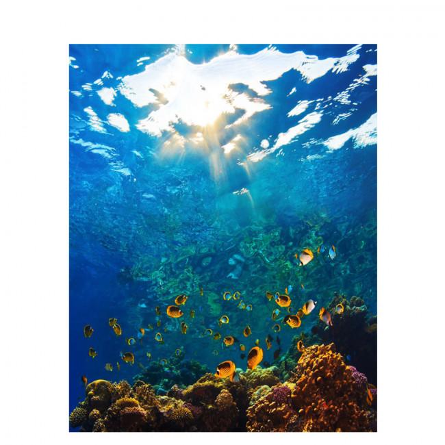 Kit pictura pe numere cu apa, Sea Life