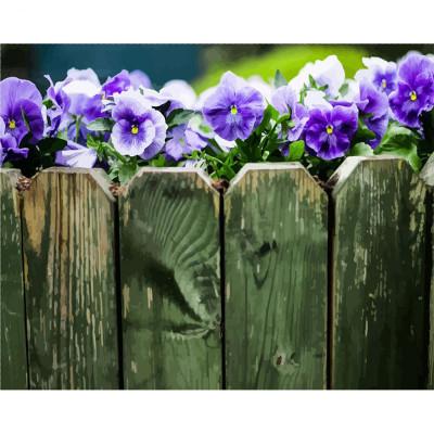 Kit pictura pe numere flori, DTP2354
