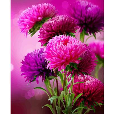 Kit pictura pe numere flori, DTP2468