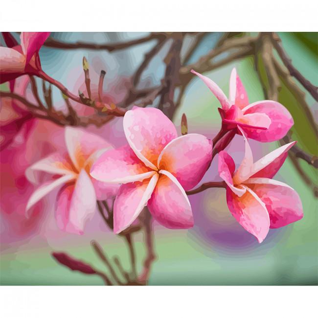 Kit pictura pe numere cu flori, DTP2507