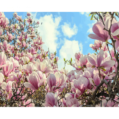 Kit pictura pe numere cu flori, DTP2551