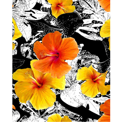 Kit pictura pe numere cu flori, DTP2616