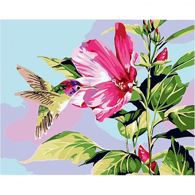 Kit pictura pe numere cu flori, Humming bird
