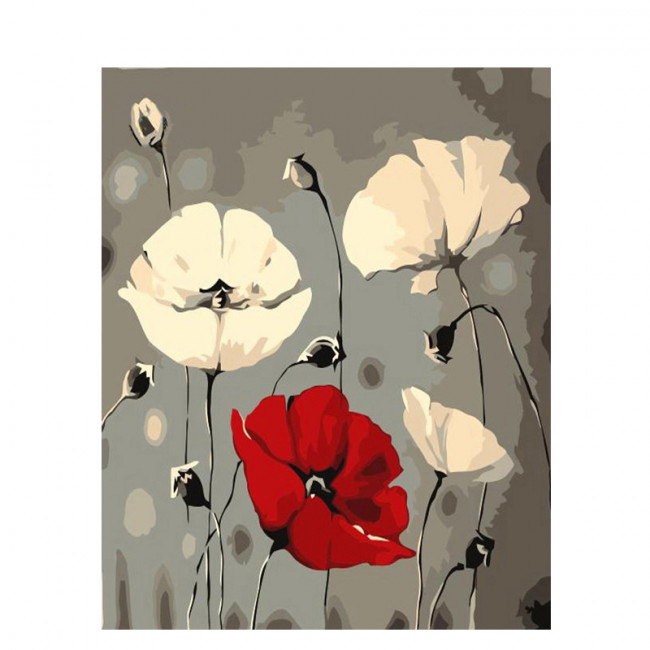 Kit pictura pe numere cu flori, Dancing poppies